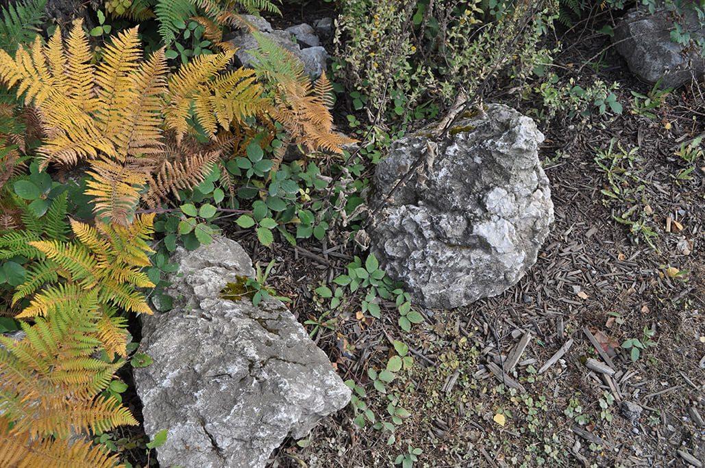 Water Worn Stone - Type Unknown