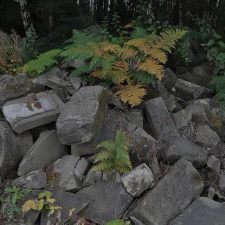 Rockery & Walling Stone